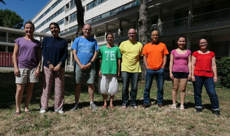 BIFROST Team meeting, Marseille, July 2019